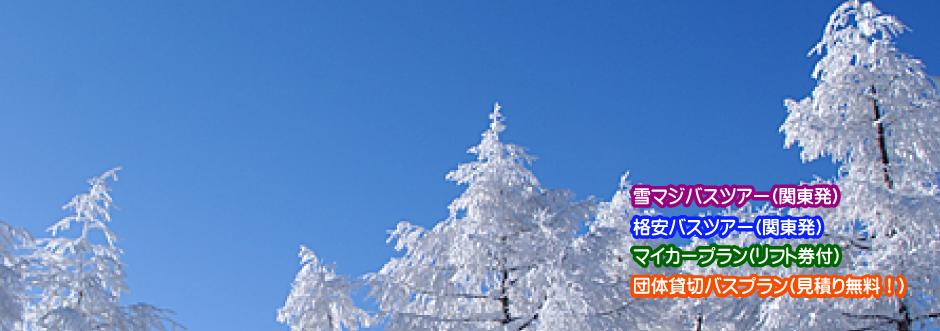 ベストスキー、スノーボードツアー